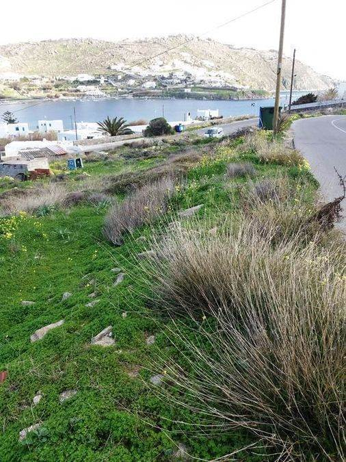 (For Sale) Land Plot || Cyclades/Mykonos - 2.005 Sq.m, 1.700.000€